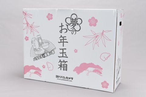 ヨドバシの新ジャンルも買った! アキバ福袋2016ご開陳【エンタメ編その1】