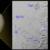 冥王星では、氷の丘が今も動き続けている(かも)
