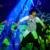 赤西仁が目の前に! レコチョクがライブ公演をVRコンテンツとして収録