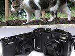 Powershot S95&G12で猫撮影してみた!