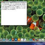 画面共有中のMacとデータをやり取りできる?