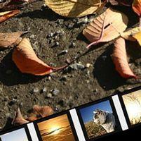 Flickr風スライドショーをJavaScriptで再現