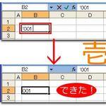 Excelの不思議!? 数の見かけを変える表示形式