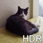 いまさら聞けないIT用語集  映像の白飛び・黒つぶれを抑えるHDR