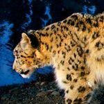 一挙30連発! 画像で見るSnow Leopard新機能