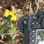 ニコンの「マイクロ」レンズを使って接写に挑戦