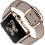 「Apple Watch」はIPv6 / 6LoWPANを採用するか?