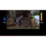 高効率ビデオコーデックとApple製品の関係を読む
