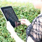 旅行先でiPadをガイドブックや情報端末として活用する