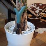 植物の環境を守るParrot Flower Powerを衝動買い!
