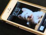24金メッキのiPhone 5バンパー「Alloy x Wood」