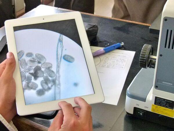 千葉・袖ヶ浦高校、「iPad 2」を利用したICT授業を公開