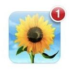 【iOS 6】写真をガバッ!と送れる「共有フォトストリーム」