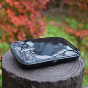 爆速の秋! 超高速モバイルデータ通信比較