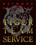 日本ラッド、タイガーチームサービスの脆弱性診断開始
