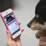 楽天に買収されたコミュニケーションアプリ「Viber」を徹底解説
