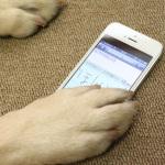 手書きメモアプリの決定版「7notes mini」を徹底解説