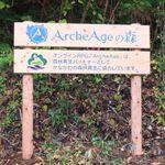 リアルで木の伐採を体験!  「ArcheAge」の森プロジェクト実施