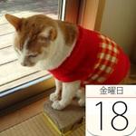 京樽で「ズワイガニちらし」セール:今日は何の日