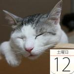 「肉山」など名店のまかないがオール500円「an まかないフェス」:今日は何の日