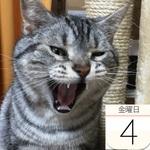 くら寿司で大胆不敵「牛丼」発売:今日は何の日