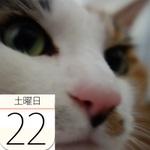 秋の土用の丑!松坂屋上野店でうなぎイベント:今日は何の日