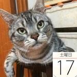 スイパラ×おそ松さんコラボカフェでオリジナル缶バッジを発売:今日は何の日