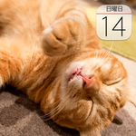 神田明神「絶品グルメ・ビール祭り」開催:今日は何の日