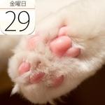 高級オリーブオイルの専門店「OIL&VINEGAR」横浜にオープン:今日は何の日