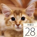 「艦これ」公式カフェ&居酒屋 酒保伊良湖 横須賀にオープン:今日は何の日