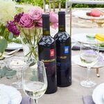 ワイン発祥の地の超貴重な「グルジアワイン」が手に入るプロジェクト!