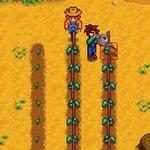 牧場物語好きな作者がひとりでつくった田舎暮らしRPG『Stardew Valley』:Steam