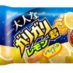 イタリア産果汁11%使用の「大人なガリガリ君 レモン」が発売