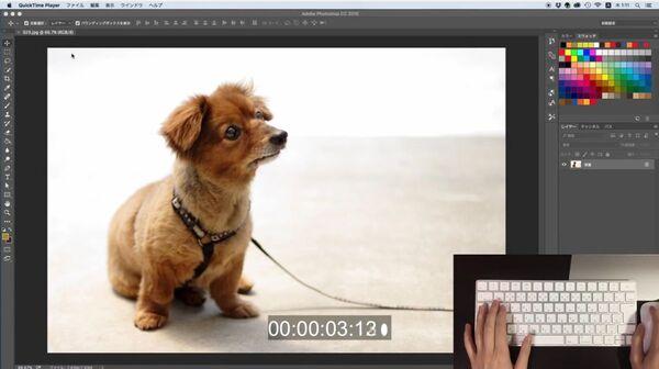面倒なふわふわ犬を60秒で切り抜く、Photoshopのスゴ技