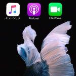 iPhoneの消せないデフォルトアプリを非表示にする方法