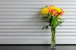 ワンコインで毎週お花が届く新サービス「Bloomee LIFE」