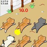 おならをする猫をしつけるゲーム─注目のiPhoneアプリ3選