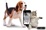 ペットの活動量の把握や健康管理にいかが?活動促進デバイス「Tractive MOTION」