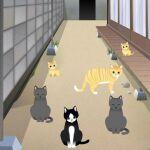 野良猫を集めながら好きなだけ写真が撮れる―注目のiPhoneアプリ3選