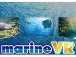 水族館を360度水中撮影動画で! 『アクアマリンふくしまVR』リリース