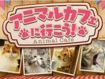 第一弾は猫カフェ、360Channelに新チャンネル「アニマルカフェに行こう!」