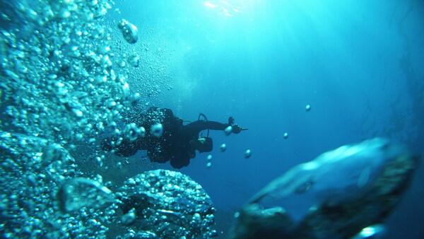 KeyMission170で撮影した水中フォト