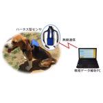 シャープ、「犬向けバイタル計測サービス」開始