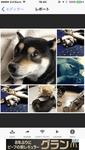 動画や写真をGIFアニメに変換できるiPhone用アプリ「GIFトースター」を徹底紹介