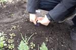 東大の産学連携ベンチャーが土壌センサー発売、農業改革に挑む