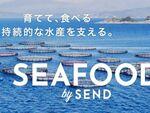 プラネット・テーブル、持続的な水産業を支援する「SEAFOOD by SEND」開始