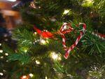 クリスマス「1人で過ごす」5人に1人