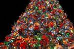 【クリスマス特集】ジングルベルと男前グルメ