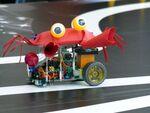小学生が自作ロボットで競い合う「越前がにロボコン」が熱かった