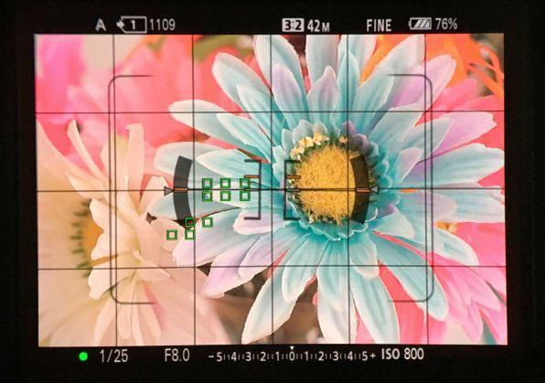 EVFは約369万画素で倍率約0.78倍とかなり大きく見える。最大輝度が従来モデルの約2倍になり、明るい屋外でも視認性が向上している。ファインダーフレームレートを120fpsと60fpsから選べ、動きの激しいスポーツなどでも見やすくなっている
